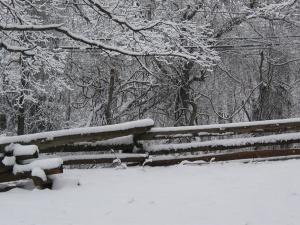 snow 1-30-03b